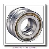 FAG NU326-E-M1-F1-C4  Cylindrical Roller Bearings