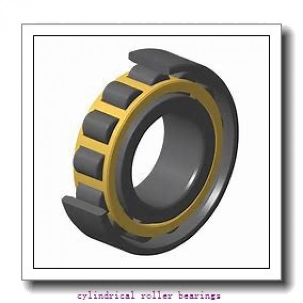 FAG NU310-E-TVP2-C3  Cylindrical Roller Bearings #1 image