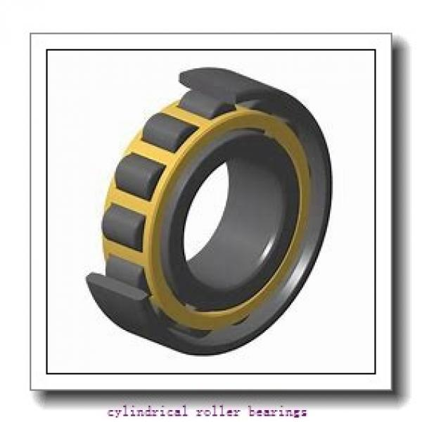 FAG NU313-E-M1A-C3  Cylindrical Roller Bearings #1 image