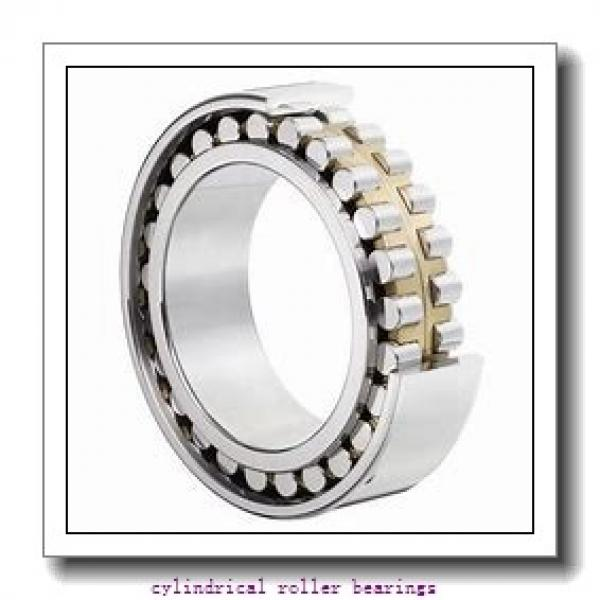 FAG NU313-E-M1A-C3  Cylindrical Roller Bearings #2 image