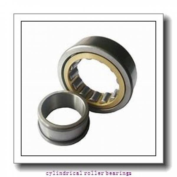 FAG NU309-E-M1  Cylindrical Roller Bearings #1 image