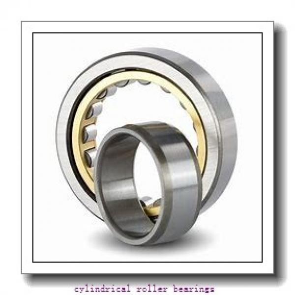 40 mm x 80 mm x 18 mm  FAG N208-E-TVP2  Cylindrical Roller Bearings #2 image
