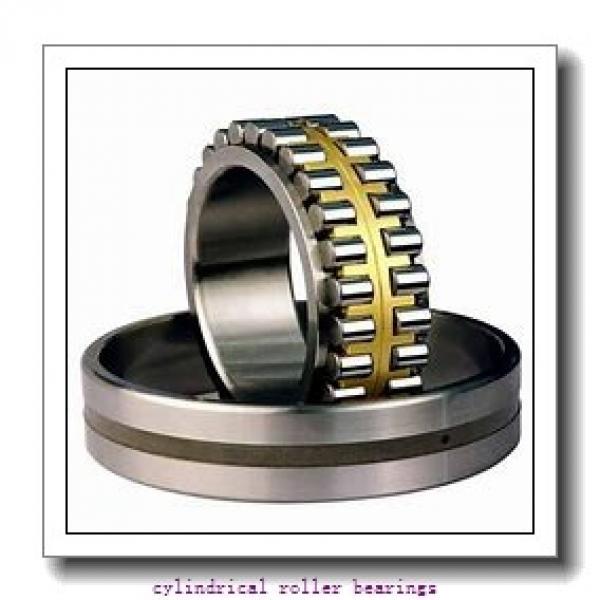 FAG NU310-E-TVP2-C3  Cylindrical Roller Bearings #2 image