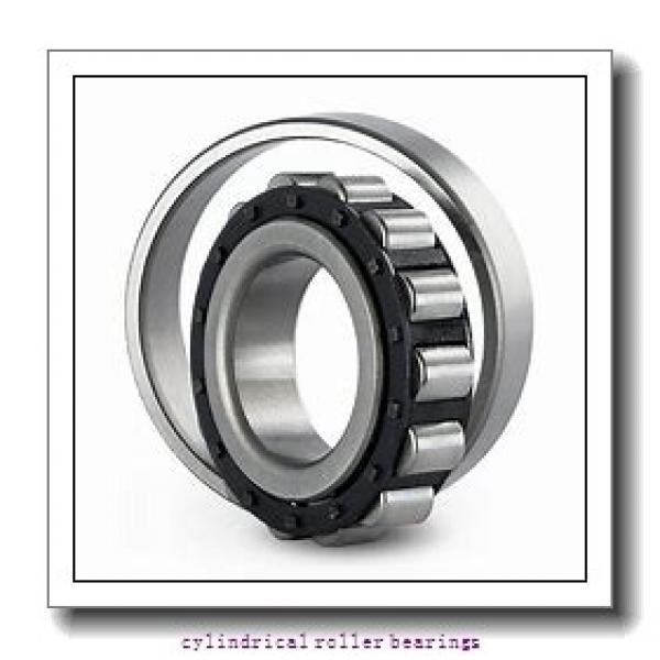 FAG NU244-E-M1-C3  Cylindrical Roller Bearings #2 image