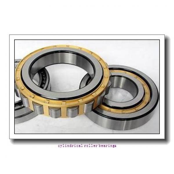 40 mm x 80 mm x 18 mm  FAG N208-E-TVP2  Cylindrical Roller Bearings #1 image