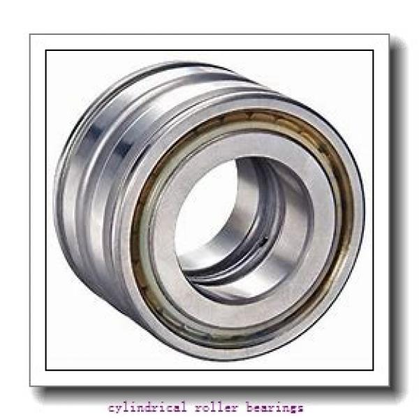 FAG NU311-E-TVP2-C3  Cylindrical Roller Bearings #1 image